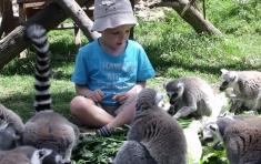 סדנאות וחוגים בגן החיות הלימודי חיפה